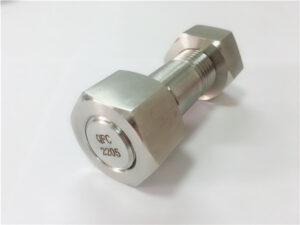 Nr.75 - Aukštos kokybės dvipusis 2205 nerūdijančio plieno varžtas